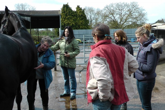 Equine Touch training with Lyn, Wendy, Petra, Vicki and Sue