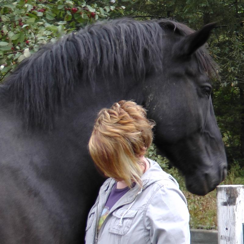 horse+human