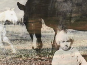 A childhood passion for horses