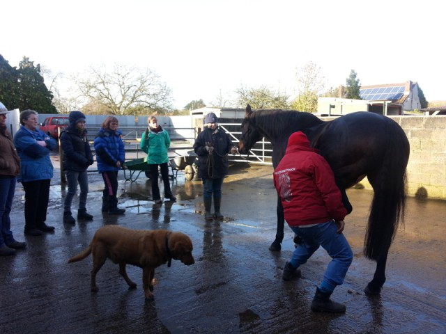 Equine Touch class. The woman in the space suit is Vicki.