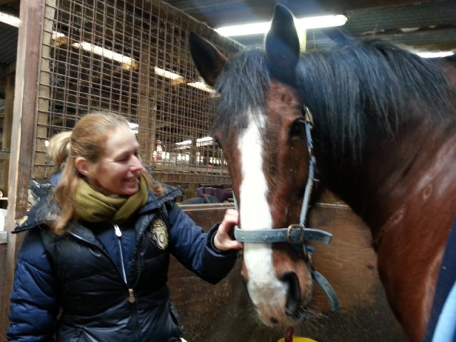 Vicki with Wilson. Even gentle giants benefit from Equine Touch.