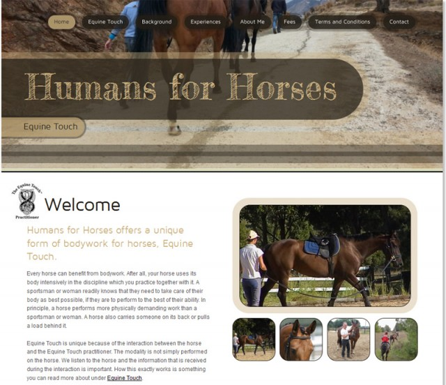 The current Humans for Horses Equine Touch website at www.humansforhorses.com