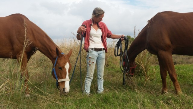Agathe with Tunante and Clarita during a grazing stop on our walk