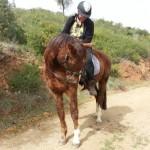 riding-andrew+pip-500
